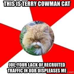 Diabetic Cat - This is Terry Cowman Cat Joe, your lack of recruited traffic in ODB displeases me