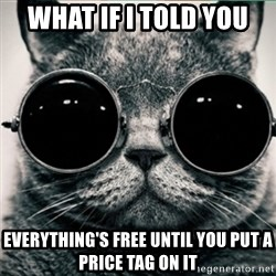 Morpheus Cat - what if i told you  everything's free until you put a price tag on it