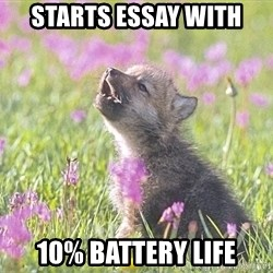 Baby Insanity Wolf - Starts essay with 10% battery life