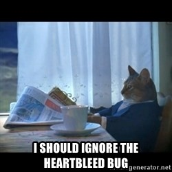 I should buy a boat -  I should ignore the heartbleed bug