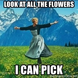 Look at all the things - look at all the flowers i can pick