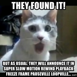 Surprised Cat - they found it! but as usual, they will announce it in super slow motion rewind playback freeze frame pauseville loopville...
