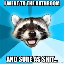 Lame Pun Coon - i went to the bathroom and sure as shit...