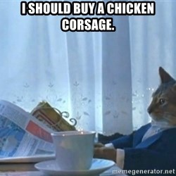Sophisticated Cat - I should buy a chicken corsage.