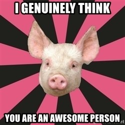 Pink Floyd Fan Pig - i genuinely think you are an awesome person