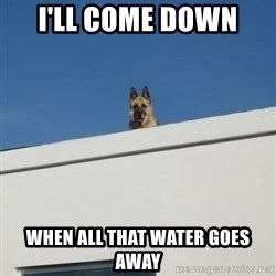 Roof Dog - I'll come down  When all that water goes away