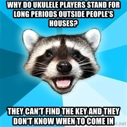 Lame Pun Coon - Why do ukulele players stand for long periods outside people's houses?  they can't find the key and they don't know when to come in