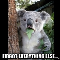 Koala can't believe it -  firgot everything else...