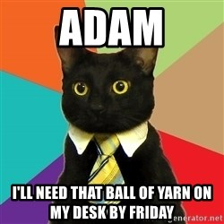 Business Cat - ADAM I'll need that ball of yarn on my desk by Friday