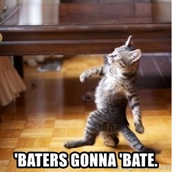 haters gonna hate cat -  'Baters gonna 'bate.
