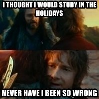 Never Have I Been So Wrong - i thought i would study in the holidays never have i been so wrong