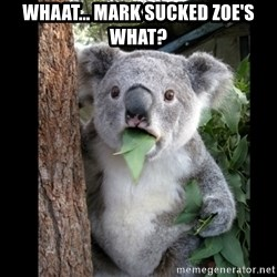 Koala can't believe it - Whaat... Mark sucked Zoe's what?