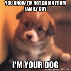 cute puppy - You know I'm not brian from family guy I'm your dog