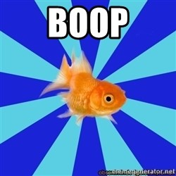 Absentminded Goldfish - boop