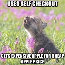 Baby Insanity Wolf - uses self checkout gets expensive apple for cheap apple price