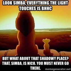 simba mufasa - Look Simba, everything the light touches is BHHC But what about that shadowy place? That, Simba, is NICO. You must never go there.