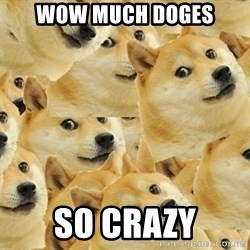so dogeee - wow much doges so crazy