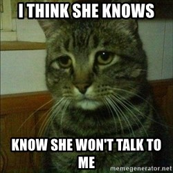 Depressed cat 2 - I think she knows  Know she won't talk to me