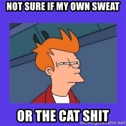 not sure fry - Not sure if my own sweat or the cat shit