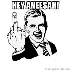 middle finger - hey aneesah!
