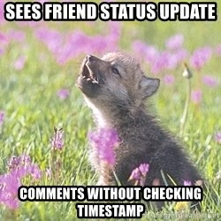 Baby Insanity Wolf - sees friend status update comments without checking timestamp