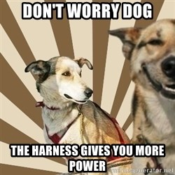 Stoner dogs concerned friend - don't worry dog the harness gives you more power