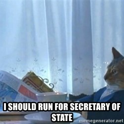 Sophisticated Cat -  i should run for secretary of state