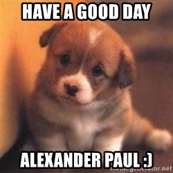 cute puppy - Have a good day  Alexander paul :)