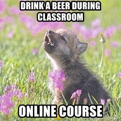 Baby Insanity Wolf - Drink a beer during classroom online course