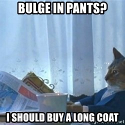 Sophisticated Cat - Bulge in pants? I should buy a long coat