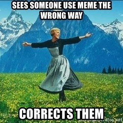 Look at all the things - sees someone use meme the wrong way corrects them