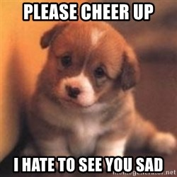 cute puppy - Please cheer up I hate to see you sad
