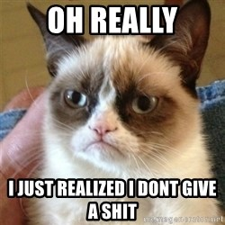 Grumpy Cat  - oh really i just realized i dont give a shit