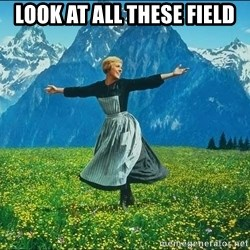 Look at all the things - Look at all these field
