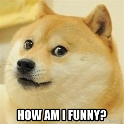 Real Doge -  How am I funny?