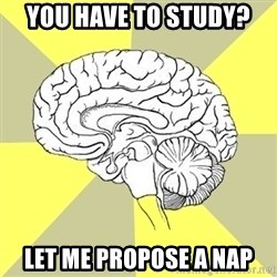 Traitor Brain - You have to study?  Let me propose a nap