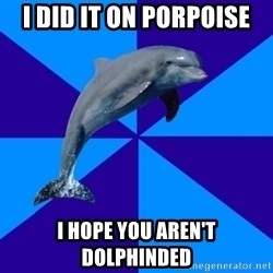 Drama Dolphin - I did it on porpoise I hope you aren't Dolphinded