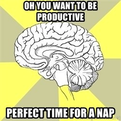 Traitor Brain - Oh you want to be productive Perfect time for a nap