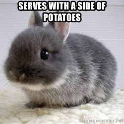 ADHD Bunny - Serves with a side of potatoes