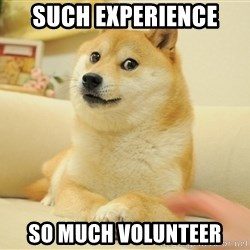 so doge - such experience so much volunteer