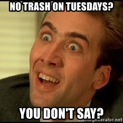 You Don't Say Nicholas Cage - no trash on Tuesdays? you don't say?