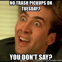 You Don't Say Nicholas Cage - no trash pickups on tuesday? you don't say?