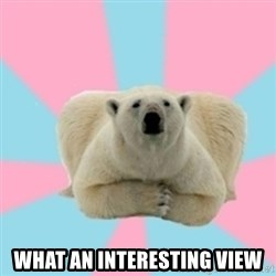 Perfection Polar Bear -  what an interesting view