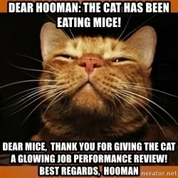 Kitty Smug - Dear hooman: The cat has been eating mice! Dear Mice,  Thank you for giving the cat  a glowing job performance review!  Best Regards,  HOOMAN