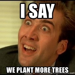 You Don't Say Nicholas Cage - I say We plant more trees