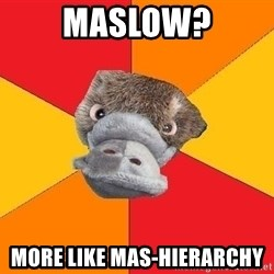 Psychology Student Platypus - Maslow? MOre like Mas-Hierarchy
