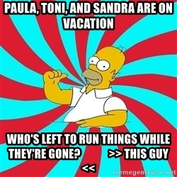 Frases Homero Simpson - Paula, Toni, and Sandra are on vacation Who's left to run things while they're gone?             >> This guy <<