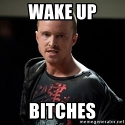 Jesse Pinkman says Bitch - Wake up bitches