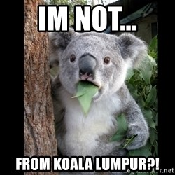 Koala can't believe it - im not... from koala lumpur?!