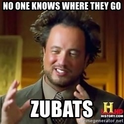 ancient alien guy - No one knows where they go zubats